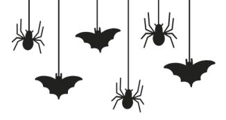 Orange Hanging Spiders and Bats Halloween Birthday Invitation-2