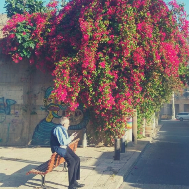 travel-blogger-israel-4